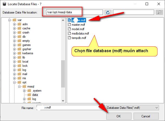 Attach-database-mdf
