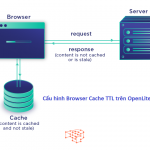 browser-cache-ttl