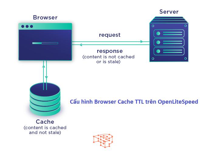 browser-cache-ttl